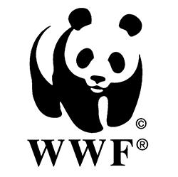 Убережем «Защитные леса», WWF