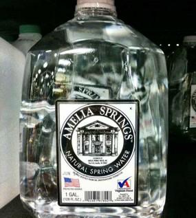 Amelia Springs Water