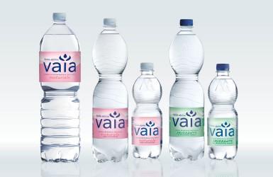 Fonte Alpina Vaia