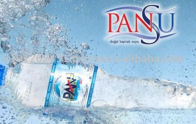 Pansu