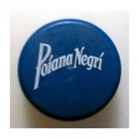Poiana Negri