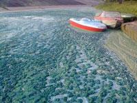 Вилейское водохранилище