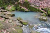 Минеральные воды