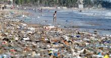 Штормы вынесли более 70 тонн пластикового мусора