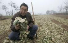 Засуха, Китай