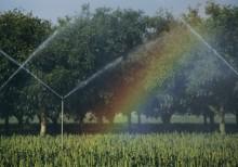 Вода в сельском хозяйстве