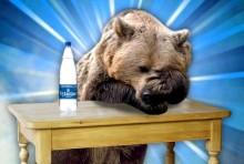 Реклама воды Vytautas - «Это сок Земли!»