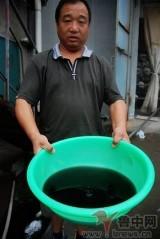 Китай: вода из колодца