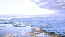 Многолетние льды в Арктике полностью исчезнут в ближайшие 20 лет