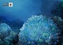 Напоминание о мусорном тихоокеанском пятне
