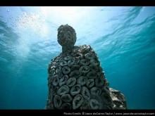 Подводное творчество Тейлора
