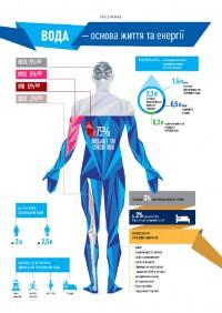 ВОДА - основа жизни и энергии человека (инфографика)
