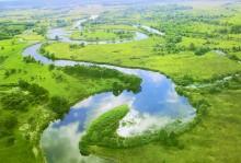 Деснянская оболонь - заповедный водный край