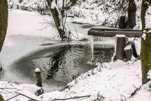 С приходом зимы вопрос о пользе снежной воды опять стал актуальным