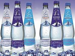 Минеральная лечебно-столовая вода Елисеевская