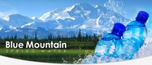 Этикетка Mountain Spring