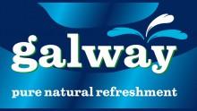 Этикетка Galway