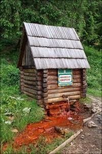 Келечинское месторождение одно из крупнейших на Украине месторождений железистых минеральных вод