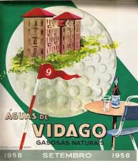 Этикетка Salus-Vidago 18
