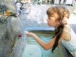 Передвижные питьевые фонтанчики в Вене